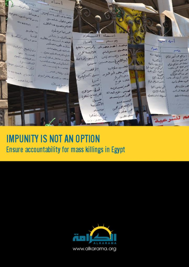 Egypt: Impunity Is Not an Option - Ensure Accountability for Mass Killings (2014)